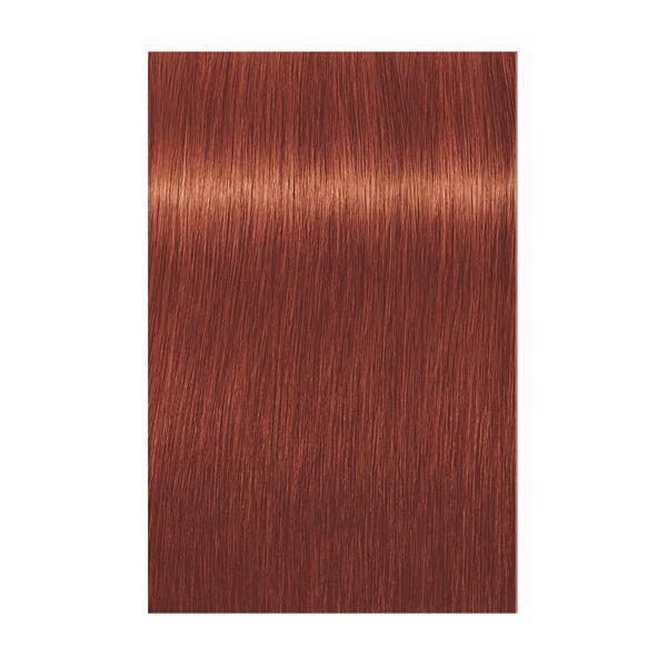 Купить Краска для волос Indola Indola, Краска для волос Indola Permanent Caring Color 8.44x светлый блонд интенсивный медный экстра 60 мл