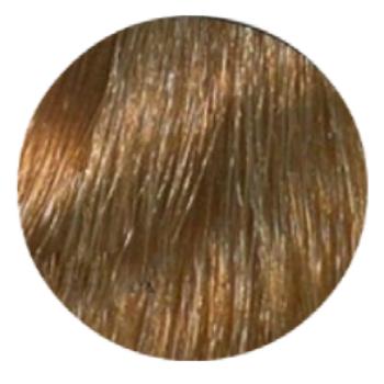 Купить Краска для волос Hair Company Hair Company, Крем-краска для волос Hair Company HairLight 8.3 светло-русый золотистый 100 мл